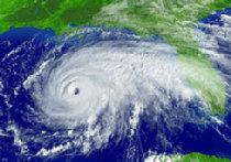 """Американский метеоролог заявляет, что ураган """"Катрина"""" наслали на Америку японские мафиози picture"""