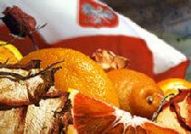 Наша безумная восточная политика или Гнилые апельсины, поломанные розы picture