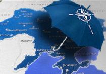 За Швейком - в НАТО picture