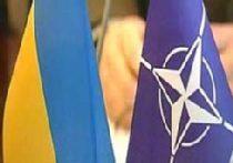 НАТО больше не хочет быть НАТО picture