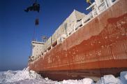 Арктическая экспедиции