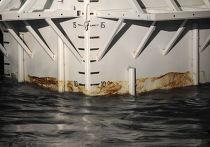 Экологическая ситуация в мексиканском заливе