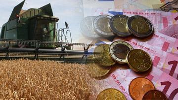 скачок цен на пшеницу