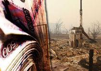 Президент России просит бизнес помочь справиться с последствиями лесных пожаров