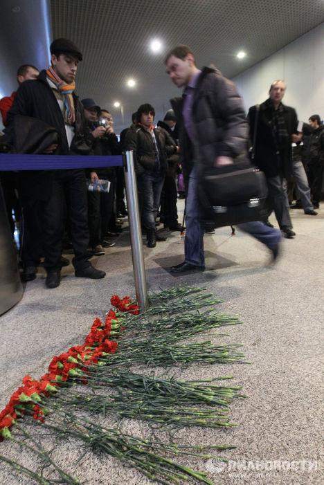 """Живые цветы в зале прилета аэропорта """"Домодедово"""""""