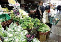 введены ограничения поставок на рынок продуктов из четырех префектур из-за превышения радиационных норм