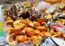 органический мусор