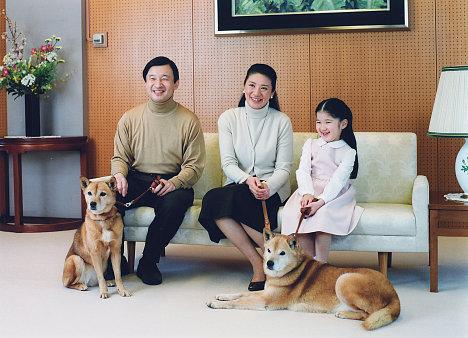 Домашние любимцы представителей власти