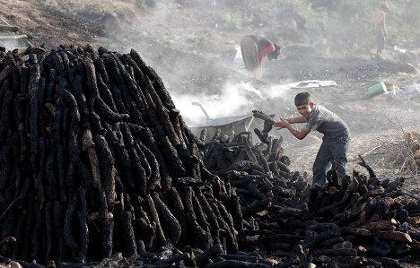 Женщина учавствует в изготовке угля в городе Кызылджахамам, Турция