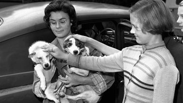 Белка и Стрелка - собаки, побывавшие в Космосе