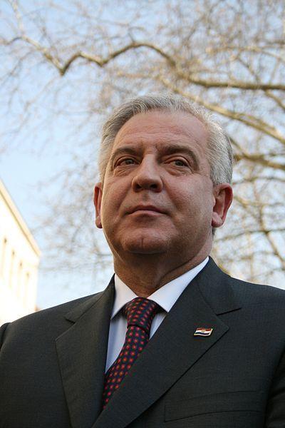 Иво Санадер, хорватский политический деятель