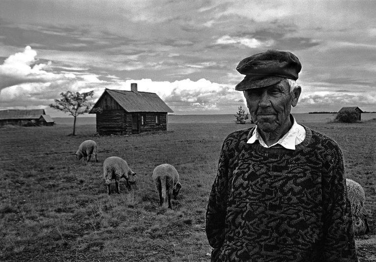 Деревня в Эстонии