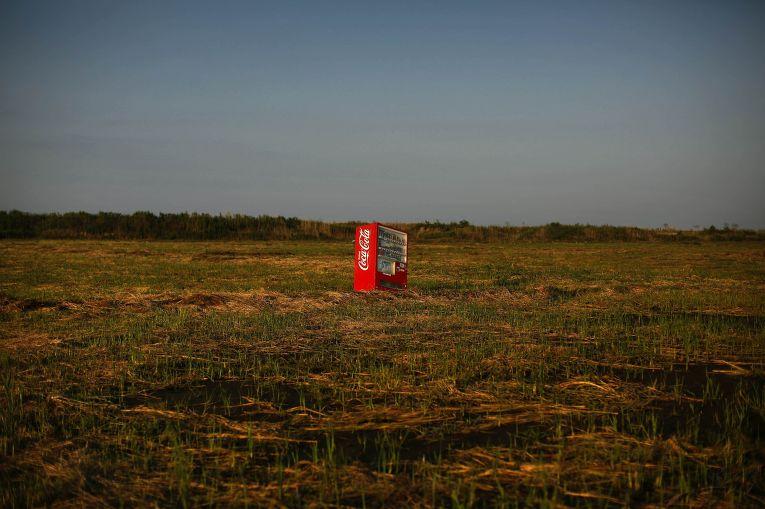 Автомат Coca-Cola, принесенный цунами, на заброшенном рисовом поле неподалеку от города Минамисома, префектура Фукусима