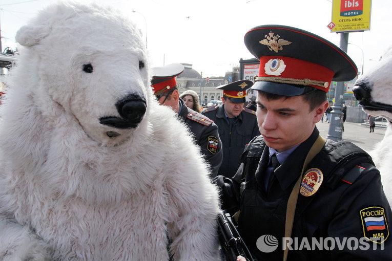 """Statoil и """"Роснефть"""" взяли белых медведей в заложники"""