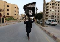 Боевик из группировки «Исламское государство Ирака и Леванта» в городе Ракка в Сирии