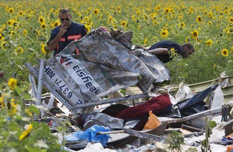 Обломки самолета MH17 Малайзийских авиалиний, разбившегося под Донецком