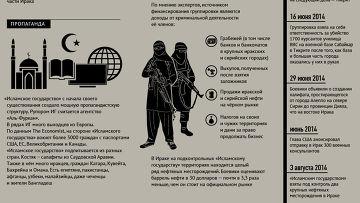 Террористическая группировка «Исламское государство»