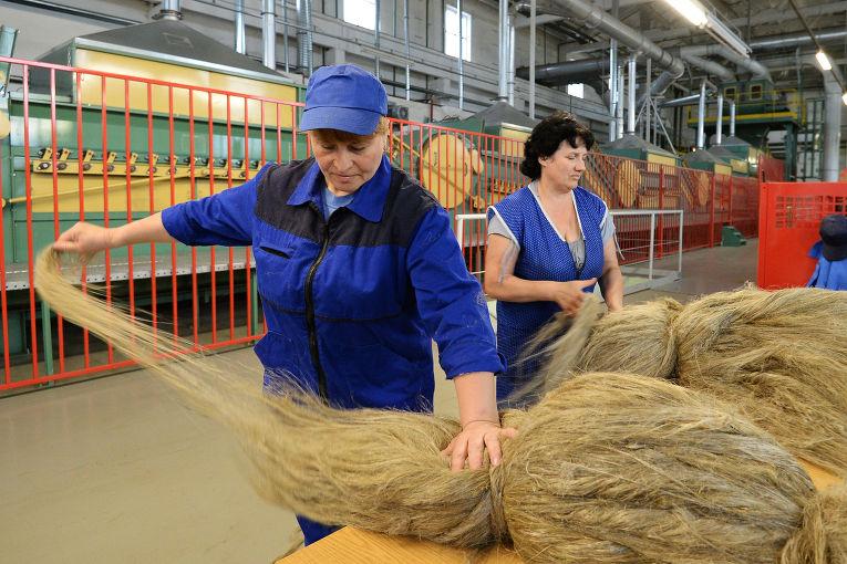 Производство льна в республике Беларусь