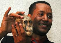 Эфиопский палеонтолог Зересенай Алемсегед держит окаменевший череп Селам