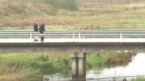 Обмен шпионами на мосту, соединяющем Псковскую область с Эстонией