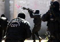 Команда тактических операций Федеральной полиции Бразилии