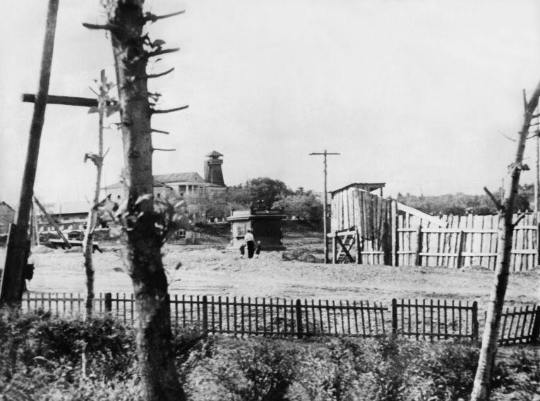 Исправительный лагерь в Биробиджане, 1954 год