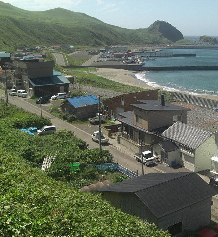 Японский остров Ребун
