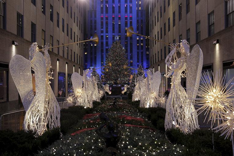 Рождественские елки рядом с Рокфеллеровским центром в Нью-Йорке