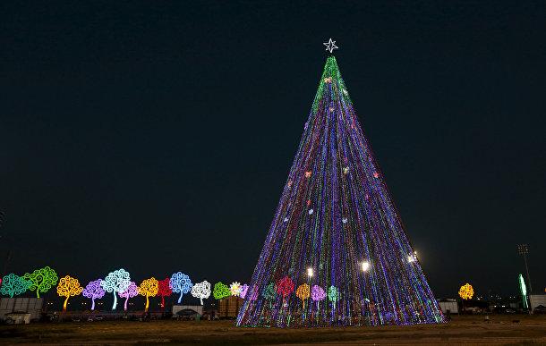 Рождественская елка в Манагуа, Никарагуа