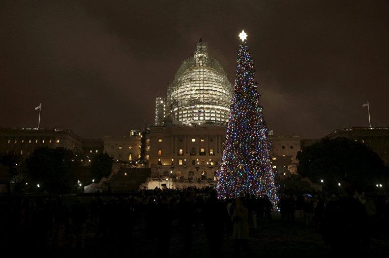 Рождественская елка на Капитолийском холме в Вашингтоне