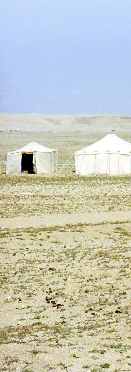 Кочевье кувейтских бедуинов