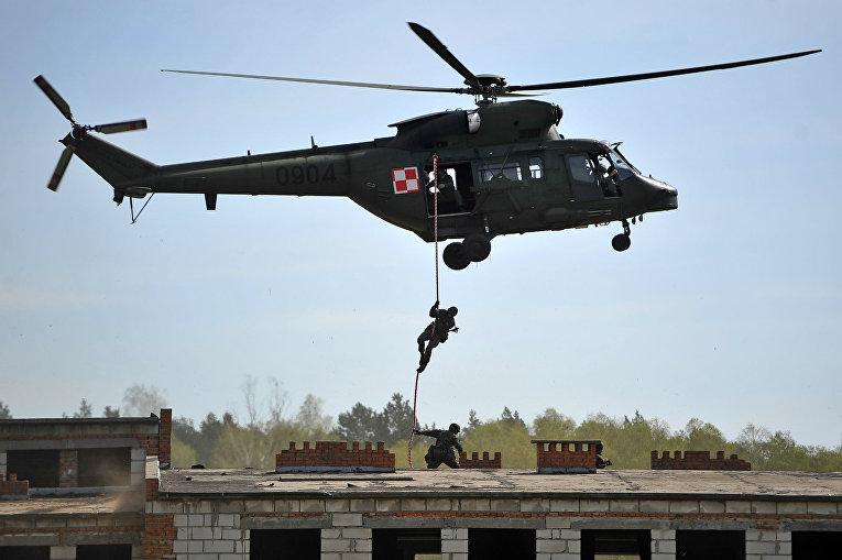Польские военные принимают участие в учениях НАТО