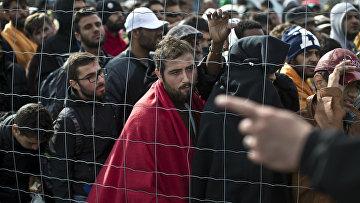 Мигранты в Венгрии