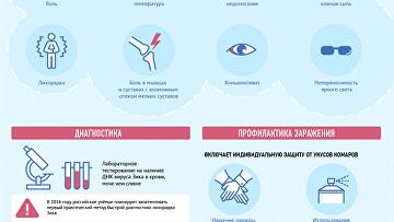Лихорадка Зика: профилактика, симптомы и лечение