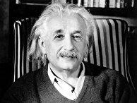 Профессор Альберт Эйнштейн за несколько дней до своего 70-летия