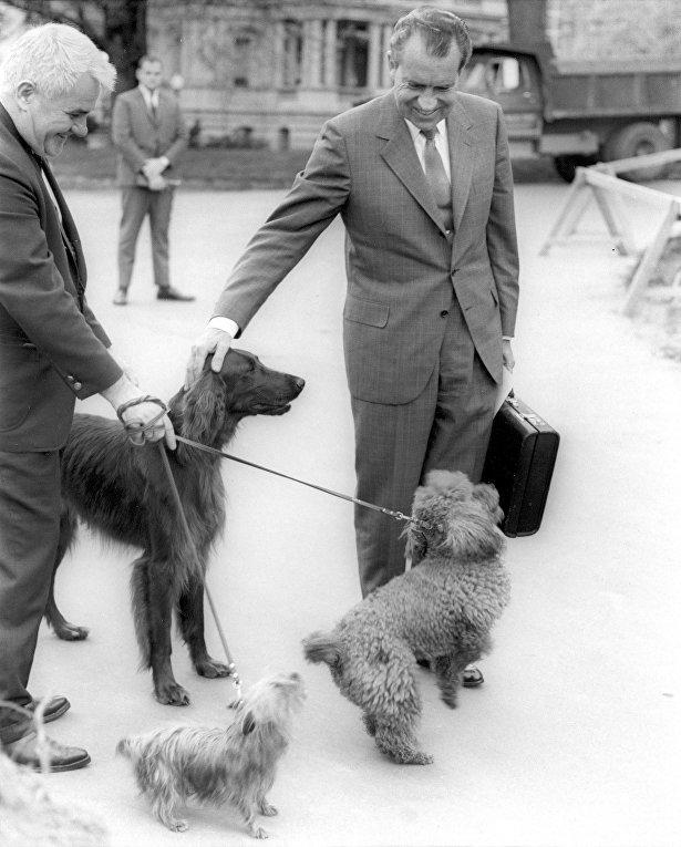 Президент Никсон гладит своего питомца – ирландского сеттера по кличке Король Тимахо