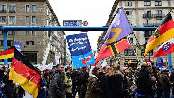 Сторонники правой партии АдГ (Альтернатива для Германии) на акции протеста против засилья мигрантов