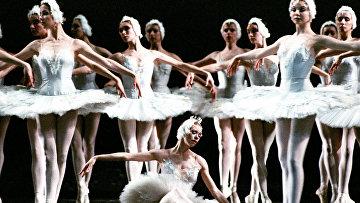 Сцена из балета Чайковского «Лебединое озеро»