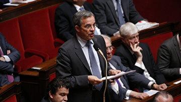 Член комитета по международным делам Тьери Мариани Национального собрания Франции во время выступления в парламенте