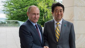 Президент России Владимир Путин и премьер-министр Японии Синдзо Абэ во время встречи в резиденции «Бочаров ручей»