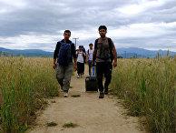 Люди, выселенные из лагеря беженцев на греко-македонской границе возле деревни Идомени