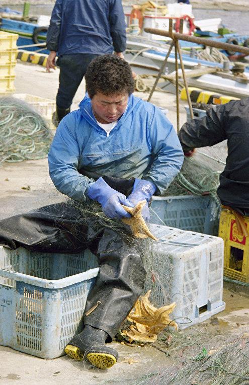 Рыбаки в порту города Немуро на острове Хоккайдо
