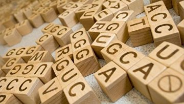 Цепочки ДНК и аминокислоты в кубиках