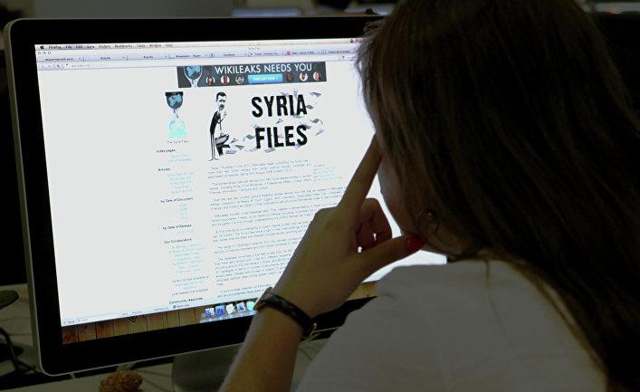 Пользватель читает cайт политических разоблачений WikiLeaks