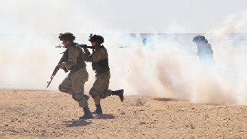 Учебный штурм в рамках российско-египетских антитеррористических учений «Защитники дружбы-2016»