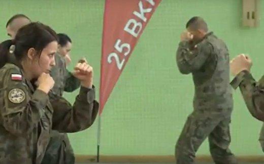 Гибридная армия Польши