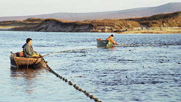 Рыбаки ЗАО «Гидрострой» на добыче рыбы на острове Итуруп на Дальнем Востоке