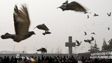 Церемония, посвященная 70-летию резни в Нанкине японскими войсками