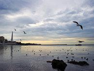 Акватория порта в Севастополе
