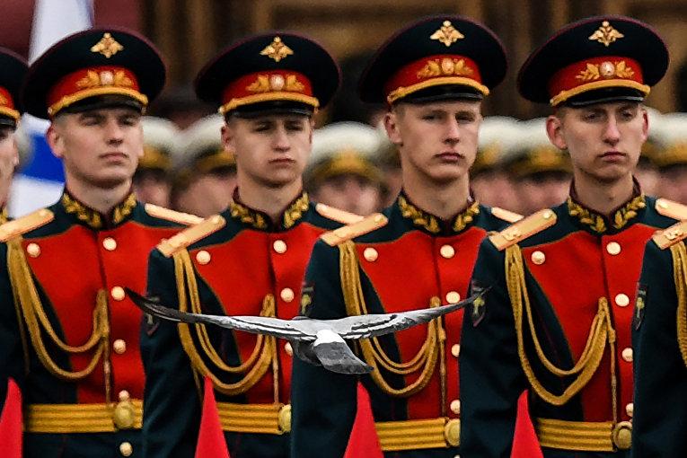 Голубь, летящий перед строем солдат почетного караула во время парада